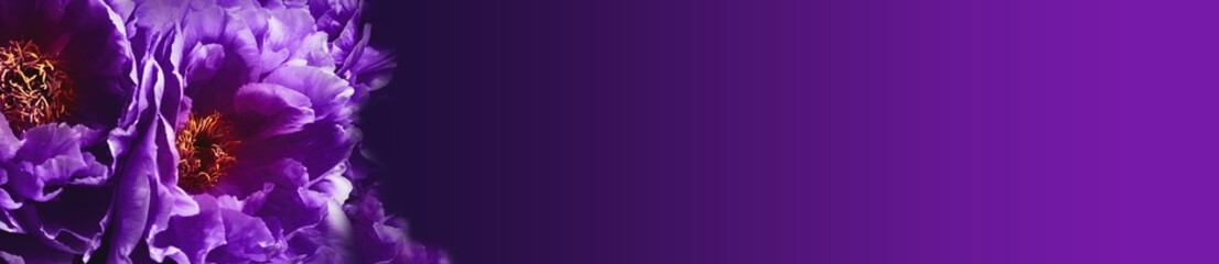 Dark mystic flower background -- Ultra violet