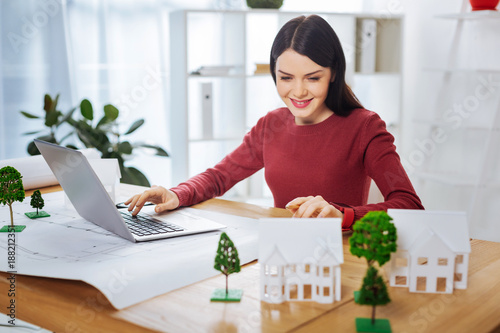 Productive afternoon. Cheerful emotional enthusiastic engineer feeling satisfied with her productive day at work and smiling while looking at the adorable realistic miniature houses
