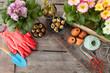 Leinwanddruck Bild - Frische Blumen im Fruehjahr