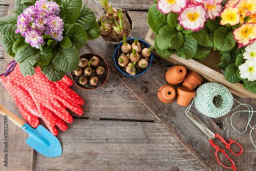 Leinwanddruck Bild Frische Blumen im Fruehjahr