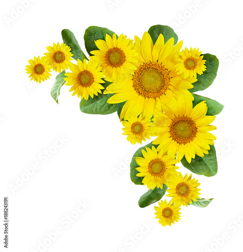 Sunflowers corner arrangement