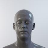 portrait of an gray man