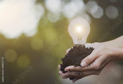 Foto Murales hand holding soil and light bulb. concept green energy.