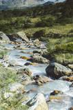 Wild Patagonia in the trekking path near the emerald lagoon,Ushuaia, Tierra del Fuego, Argentina. - 188279192