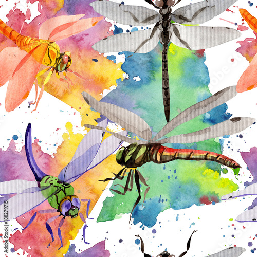 Exotic dragonfly wild insect pattern in a watercolor style. Full name of the insect: dragonfly. Aquarelle wild insect for background, texture, wrapper pattern or tattoo. - 188279715