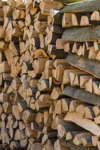 cut tree trunks - 188297947