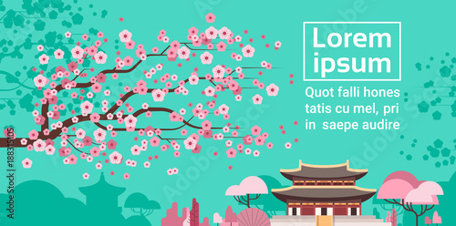 Aluminium Groene koraal Sakura Blossom Over Korea Temple Or Palace Landscape South Korean Famous Landmark View Flat Vector Illustration