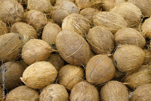 Close up on coconut in pile in harvest season - 188320322