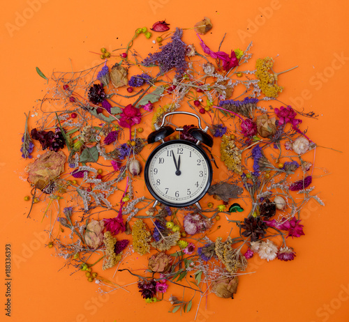 Vintage alarm clock and herbs
