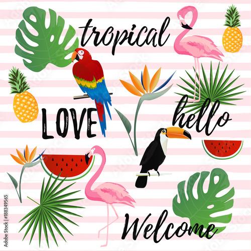tropikalny-bezszwowy-deseniowy-tlo-tropikalny-projekt-plakatu-tlo-wakacje-i-wakacje-tapeta-zaproszenie-karta-tekstylnego-druku-wektorowy-ilustracyjny-projekt