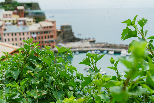 Foto op Plexiglas Groene nice Ligurian Sea