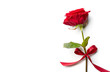 Quadro Red rose with ribbon isolated on white background