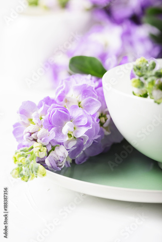 Foto Murales Beautiful spring flower on the white table