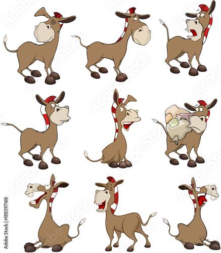 Papiers peints Chambre bébé Set of Cartoon Illustration Donkeys for you Design