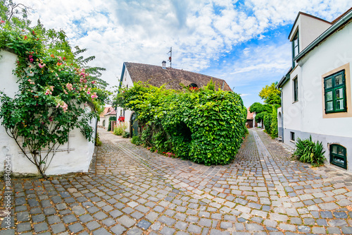 Typical cobbled street of charming little town Szentendre.