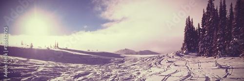 Staande foto Beige Winter landscape