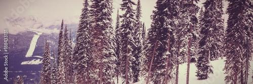 Fridge magnet Winter landscape