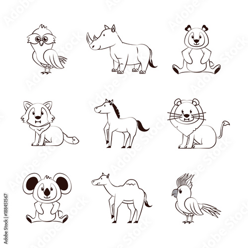 Cute animals cartoons icons icon vector illustration graphic design