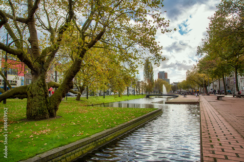 Fotobehang Rotterdam Rotterdam city center park in Netherlands in November 6, 2017