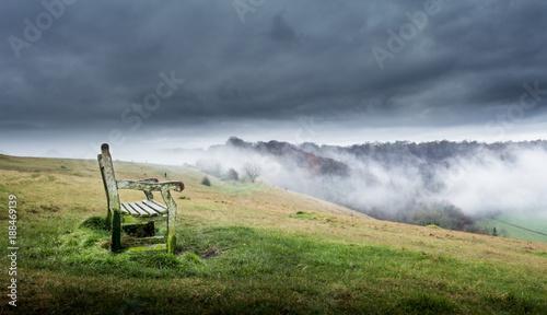 Misty woodland view - 188469139