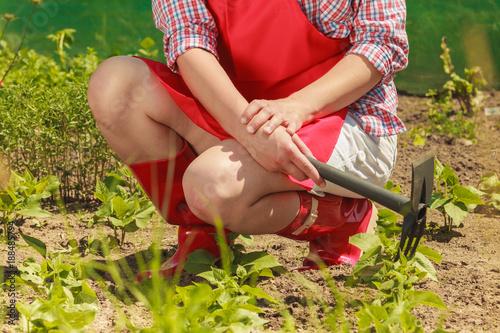 Foto Murales woman with gardening tool working in garden