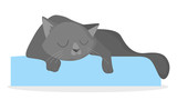 Black cat sleeping.