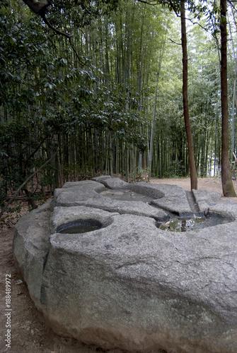 Papiers peints Rivière de la forêt japan image nara