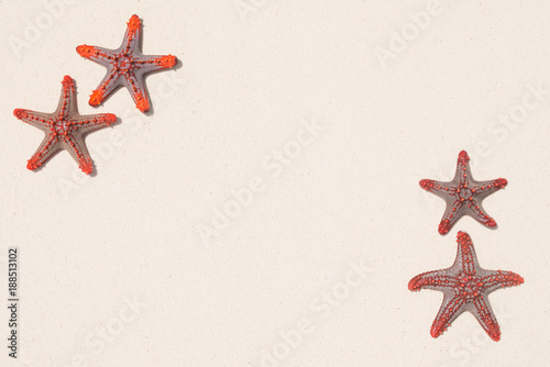 Foto Murales Starfish on sandy beach background