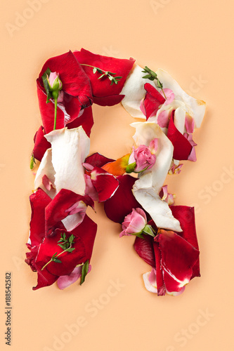 Foto Murales Letter R made from red roses and petals isolated on a white background