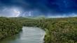 Rain Forest on the road to Kuranda