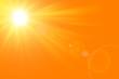 Quadro Sfondo astratto soleggiato di estate di natura con il sole splendente