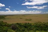 Savannah, Masai Mara National Reserve, Kenya