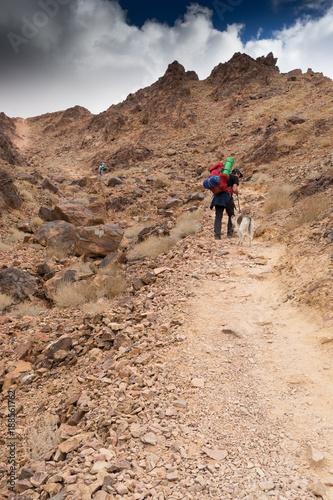 Foto Murales Trekking in Negev dramatic stone desert, Israel