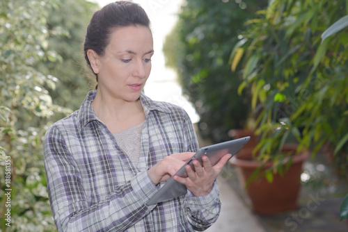 Foto Murales Lady by potted plants using tablet