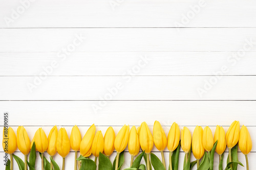 Yellow tulips border on white wooden background. Copy space, top view.