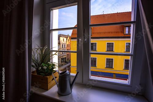 Fototapeta view from the window