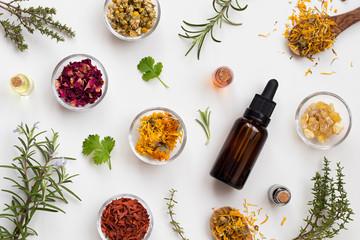 Selection of essential oils and herbs on a white background, top view