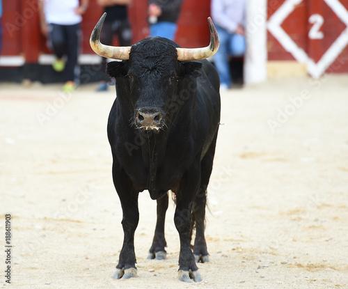 Foto Murales toro en españa