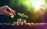 Plant Growing In Savings Coins Money - Investment Concept - 188617379