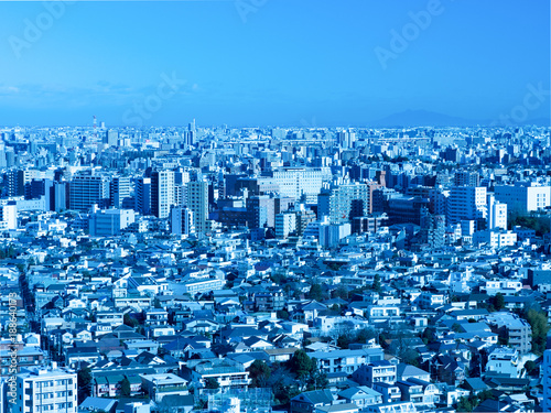 Foto op Plexiglas Tokio 東京都の都市景観