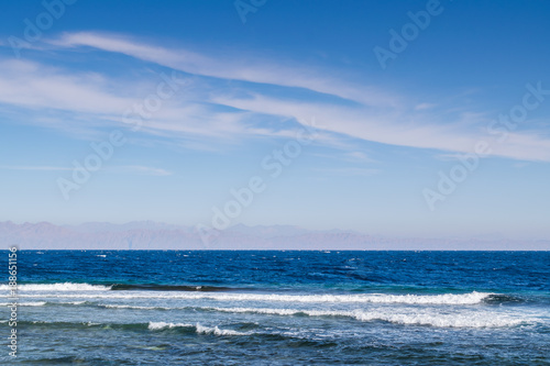 Summer landscape with sea