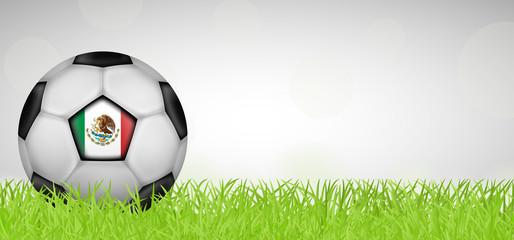 Fußballwiese - Fußball Mexiko