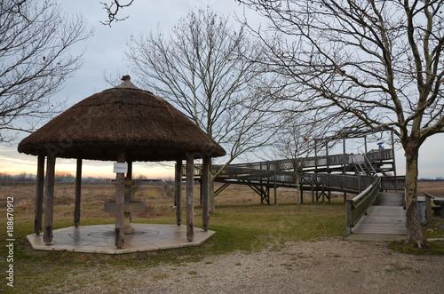 Foto Murales Parco Nazionale Neusiedler See a Illmitz
