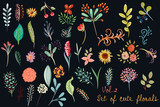 Collection of vector cute florals in rustic simple style on deep back. Great for fabric designs - 188672505