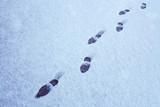 Fußspuren im Schnee - 188677579