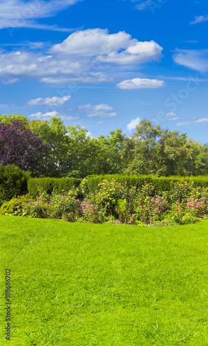 Foto Murales Schöner Garten mit Blumenbeet