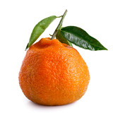 A single whole mandarin with a stem and leaves isolated on white.