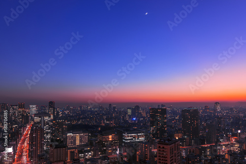 Foto op Plexiglas Tokio 東京の夜空
