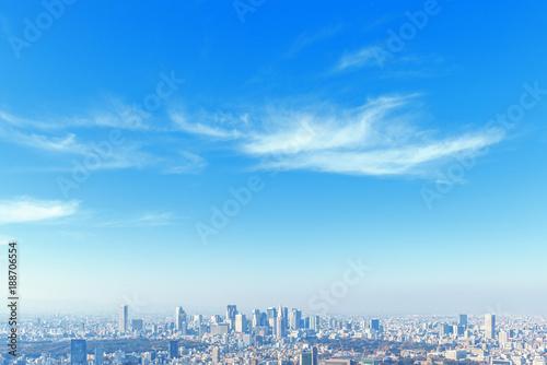 Aluminium Tokio 東京新宿の高層ビル群