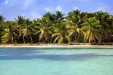 Saona island beach - 188718578